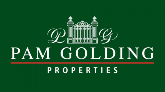 Restructure, possible job cuts at Pam Golding as real estate on 'brink of collapse'