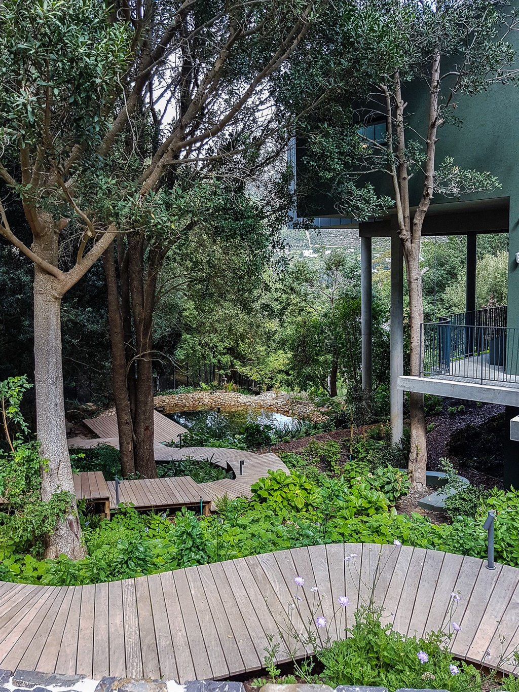 garden with trees and boarwalk