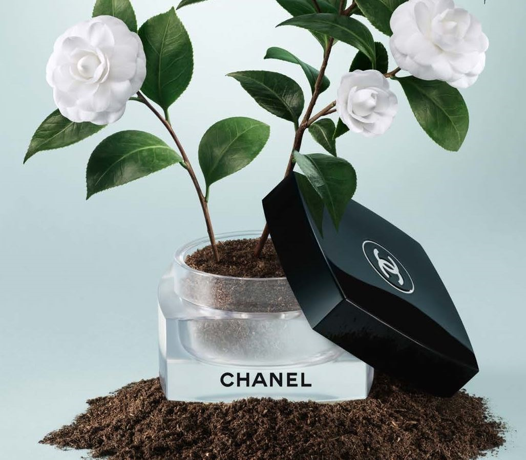 chanel cultivating beauty