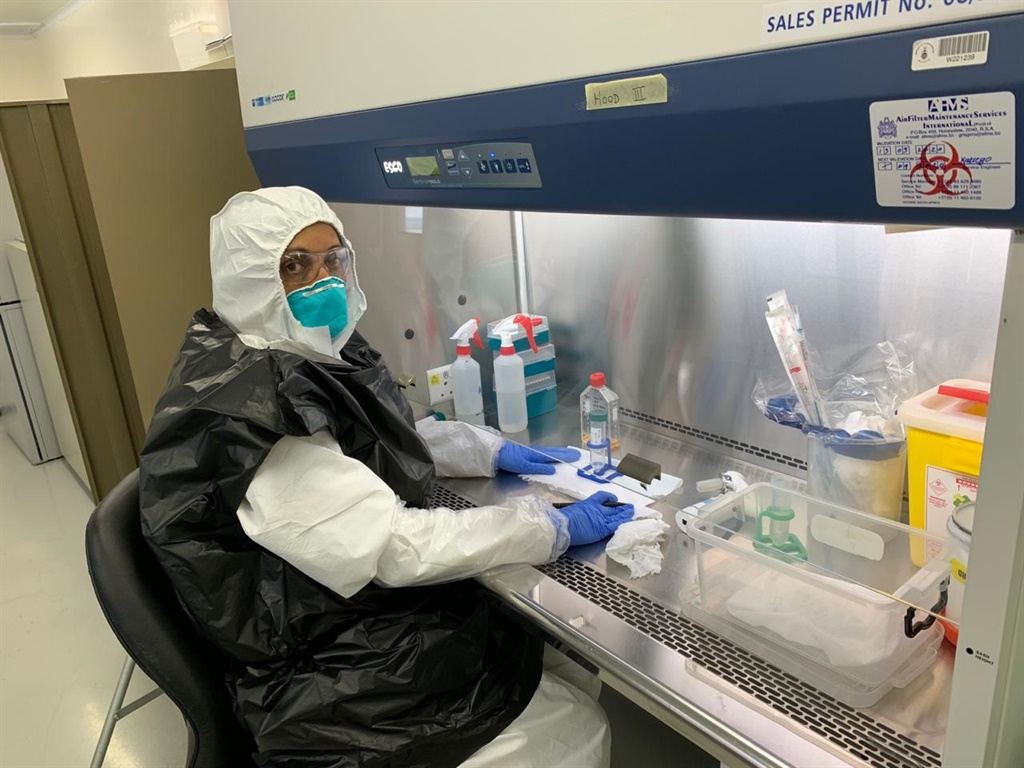 'Great feat': SAMRC scientists harvest live coronavirus for validation of test kits - News24