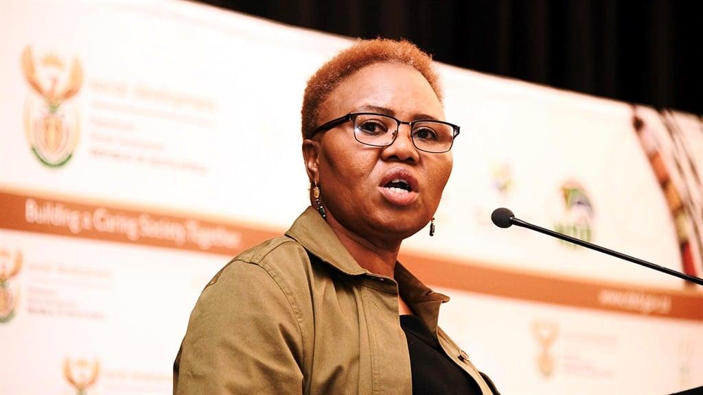 lindiwe zulu, social development