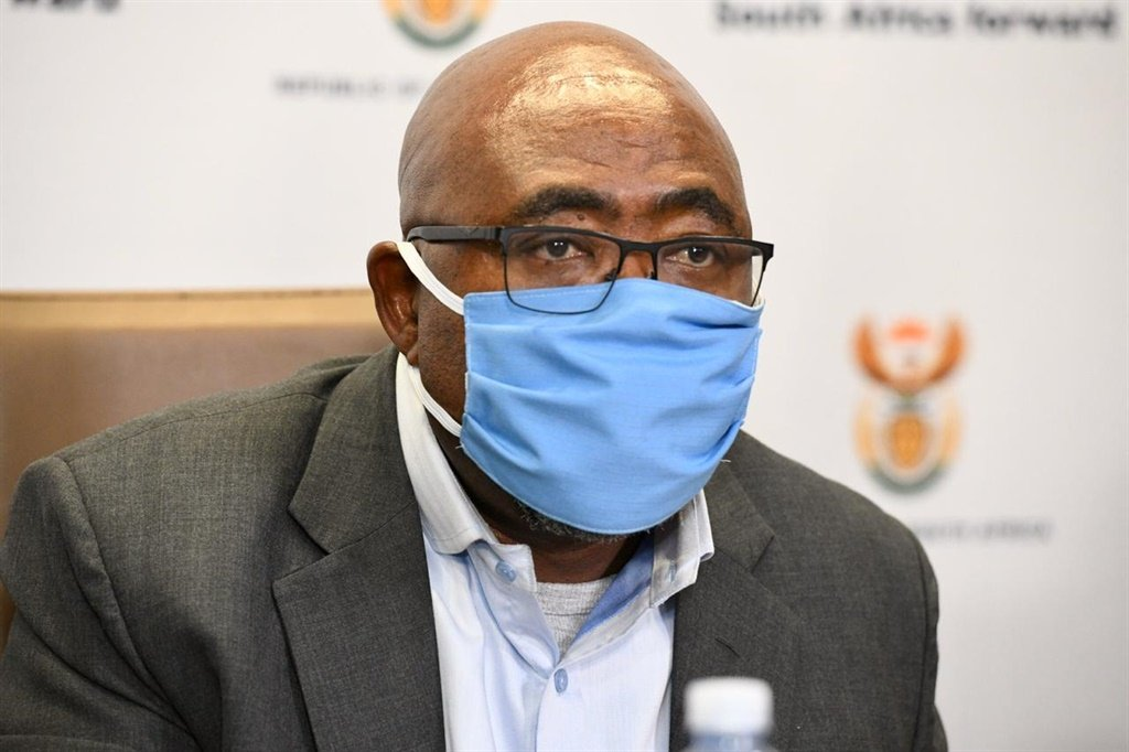 Minister of Employment and Labour Thulas Nxesi.