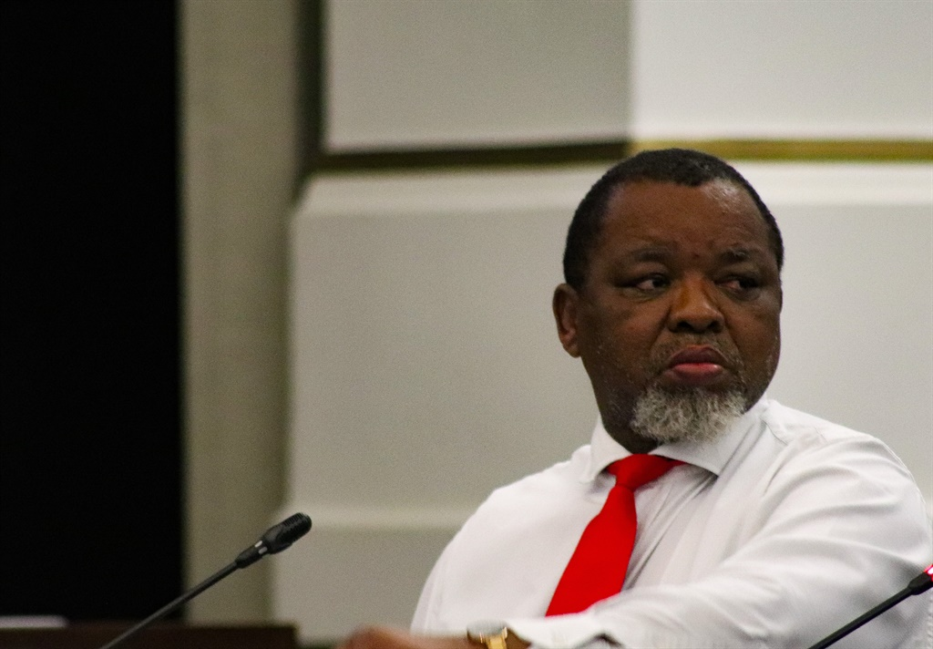Mineral Resources and Energy Minister Gwede Mantashe.