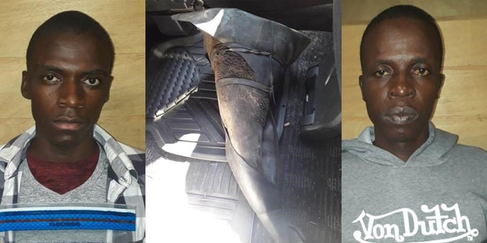 The father and son duo, Alberto Ernesto Nharreluga (47) and Alberto Erneto Nharreluga Jnr (27) were arrested in April 2019 after being found in possession of two rhino horns and shark fins. (Supplied: SAPS)