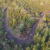 Trail Lynx is transforming Plett into MTB paradise