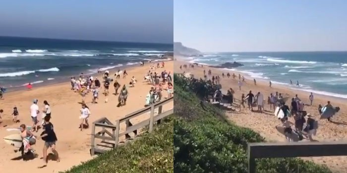 WATCH | Illegal Durban beachgoers flee from authorities - News24