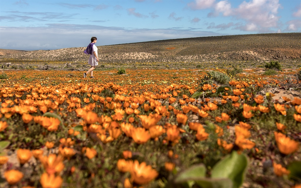 Namakwa- nasionale park. Foto: Evan Naudé