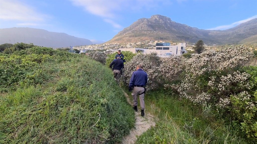 WATCH | The slow, painstaking effort involved in the search for a missing 3-year-old - News24
