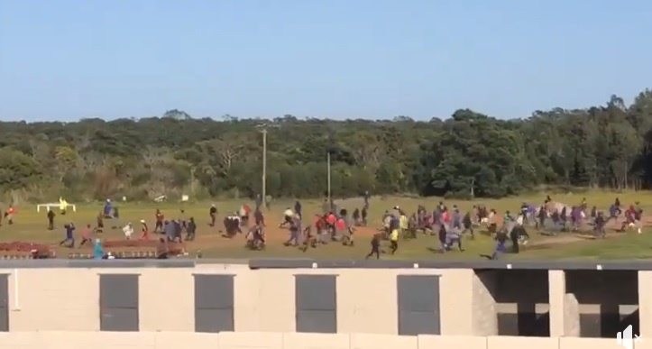 Screengrab of a video of protesters at the Fairview Race Yard. Horses have been reportedly attacked.