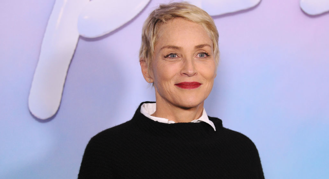 """Actress Sharon Stone attends the premiere of """"SPF-18"""". Photographed by Jason LaVeris"""