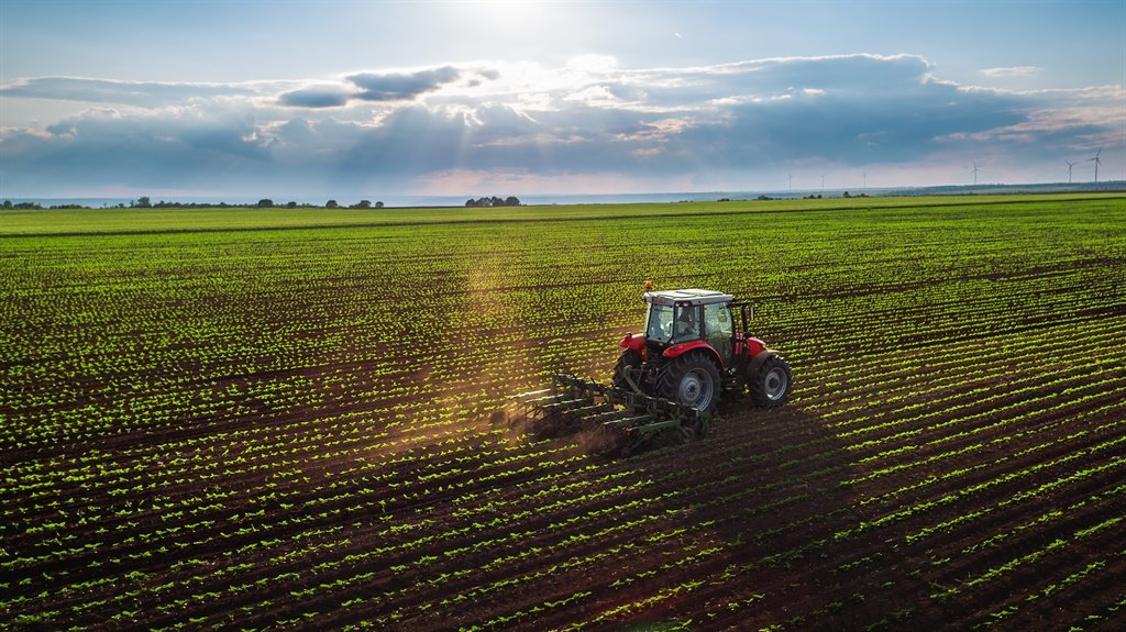 The export of citrus, wine, mealies, sugar cane, apples, pears, grapes, avocados and macadamia nuts all contributed to boosting growth in the sector. Picture: iStock