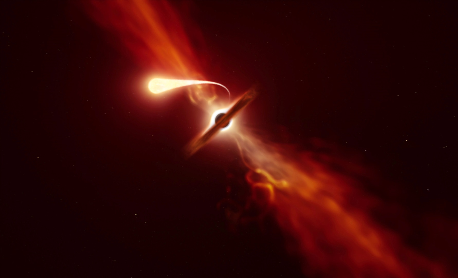 'Spaghettification' of star shredded by black hole witnessed by astronomers