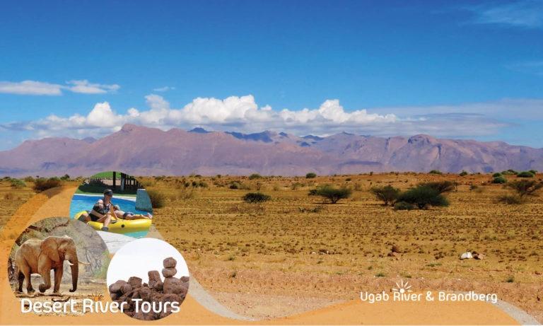 Desert River Tours