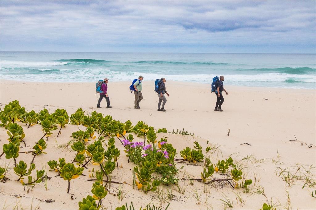 Foto: Kaapse Natuurbewaring