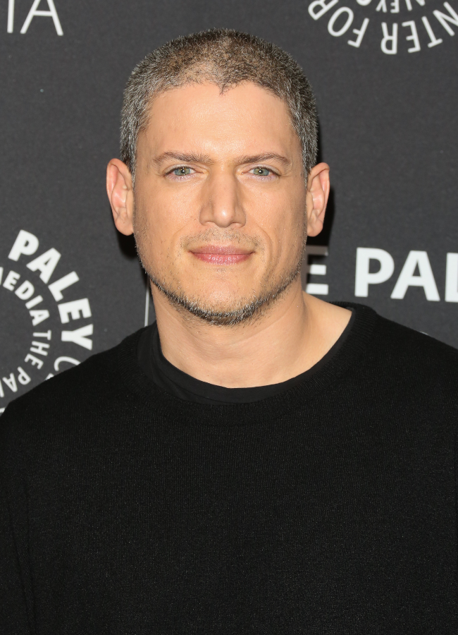 Prison Break star Wentworth Miller is quitting the role that turned him into a household name as he wants to play gay roles going forward in his career. (Photo credit: Gallo Images/Getty Images)