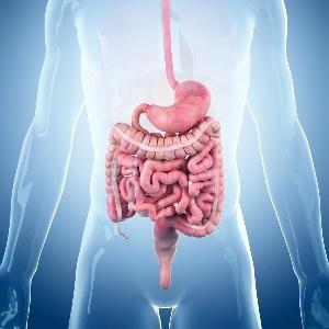 gastroparesis common in diabetics