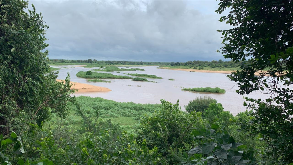 Rivers overflowing in Kruger Park after Cyclone Eloise hits.