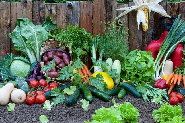 Vegetables come in many shapes and sizes, each with its own distinct flavour. (Photo: Getty Images/Gallo Images)