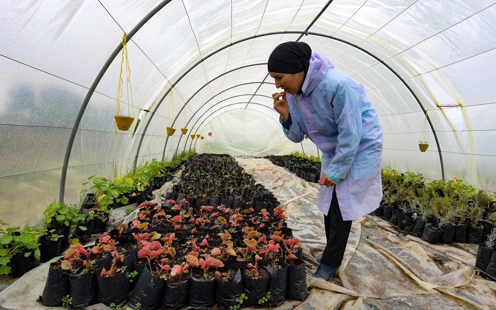 Sonia Ibidhi, a 42-year-old journalist turned to organic farming, tastes some petals in the greenhouse of her small farm where she produces edible flowers, in the northwestern Tunisian coastal town of Tabarka.