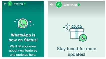 Statusse whatsapp 100 Short