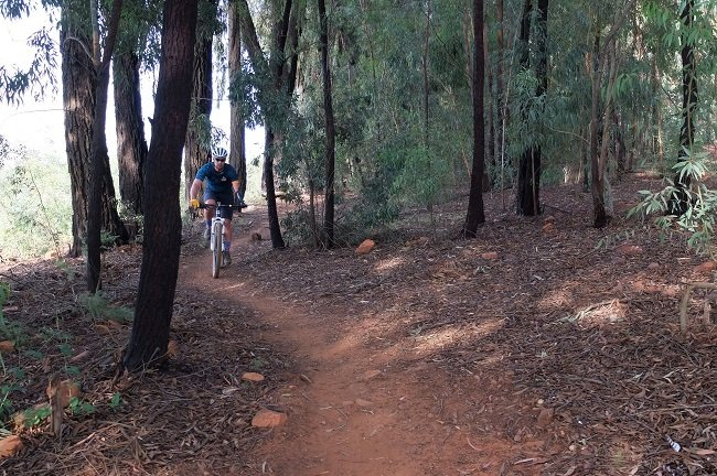 Some of the trails have good shade, with trees adding a sense of speed (Photos: Reuben van Niekerk)