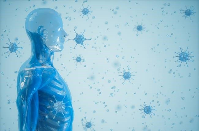 Human Immune System And Bacteria