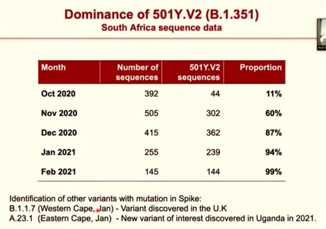 501Y.V2 variant