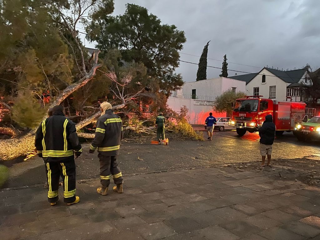 Graaff-Reinet plunged into darkness on Thursday night after powerlines were downed by falling trees due to strong winds.