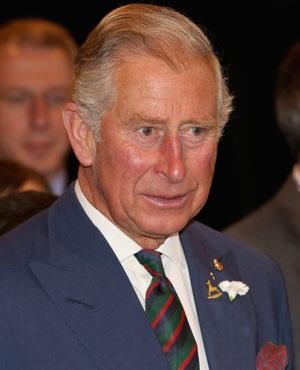 Prince Charles, Prince of Wales. (Chris Jackson, AFP)