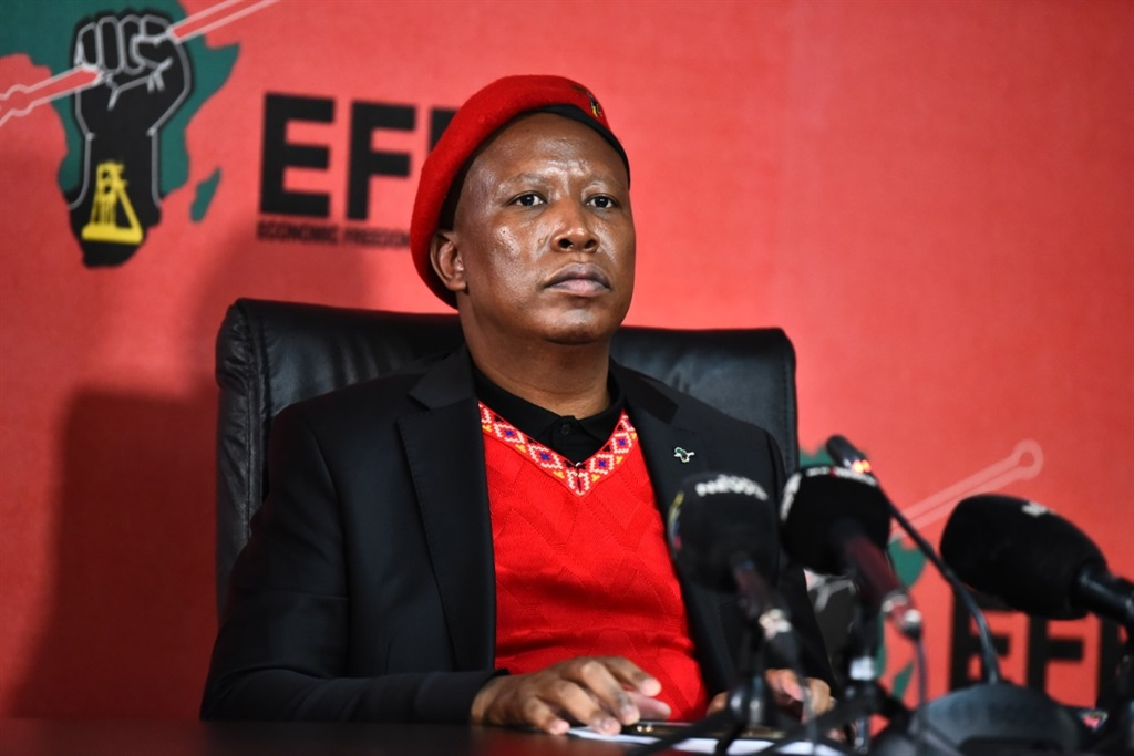 Julius Malema said elections were costly and that it would be unfair for parties to go into elections without campaigning, especially the smaller parties which are relatively unknown. Photo: EFF/Twitter