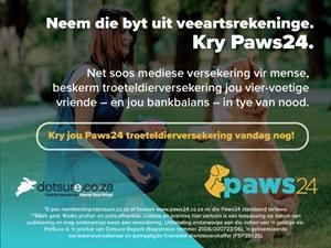 Beskerm jou viervoetige vriende met Paws24-troeteldierversekering