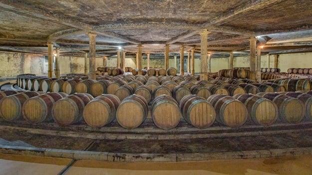 Morgenhof wine cellar