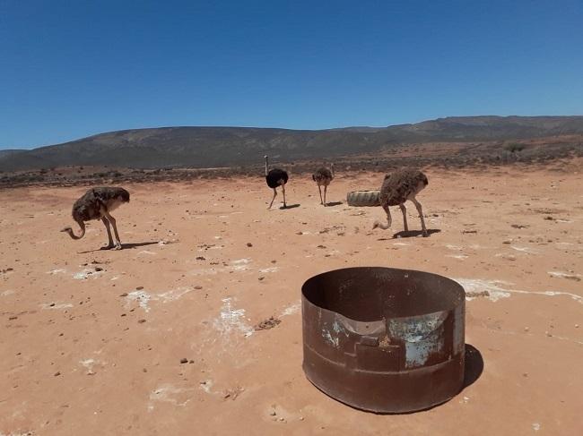 SA for Hope beoog om elke tweede maand na 'n droogtegeteisterde gebied uit te reik. Foto: Pieter du Plessis
