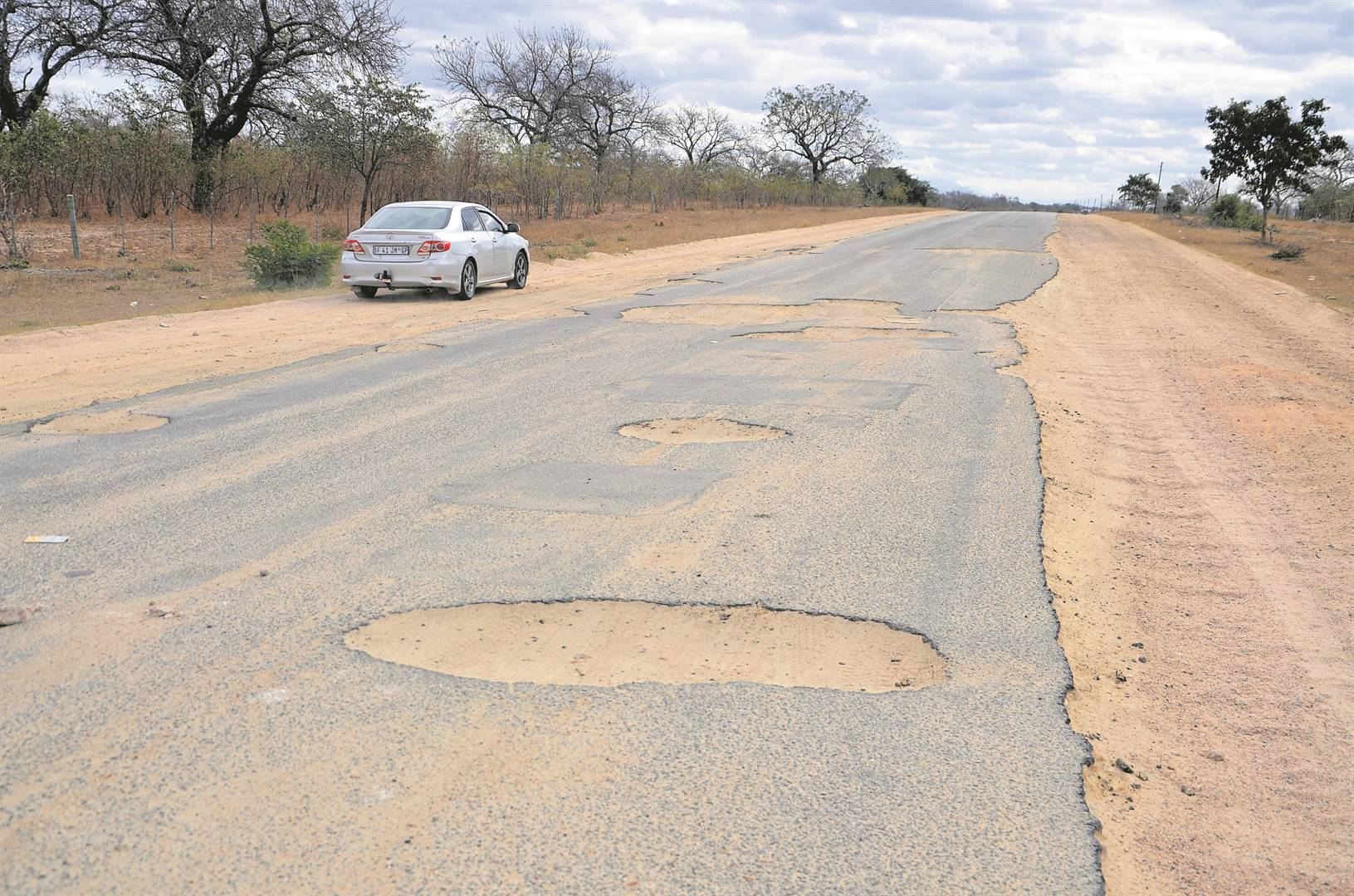 Elephant tramples suspected poacher to death at Kruger National Park - News24