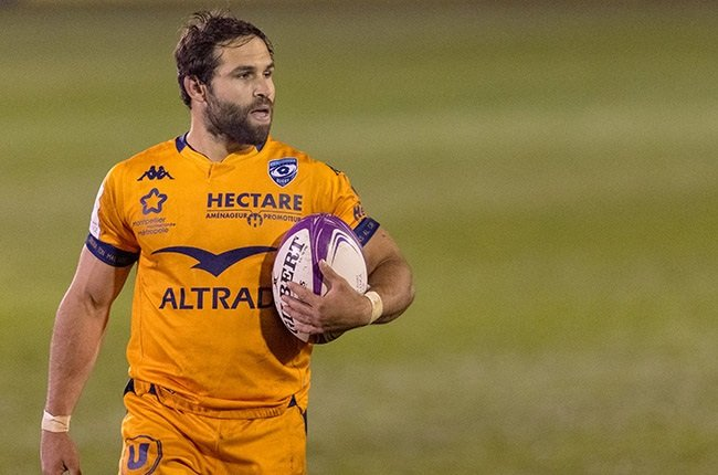 Reinach 'excellent' with Bok No 9 spot open after Faf injury - News24