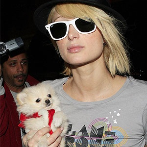 Paris Hilton and her dog Tinkerbell