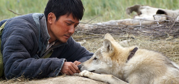 Shaofeng Feng in Wolf Totem (Photo supplied)