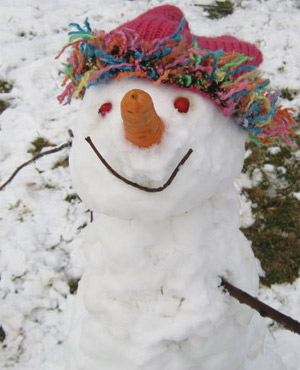 A snowman is seen in the Wartrail area of the Barkly East district in the Eastern Cape. (Kath Isted, News24 User)
