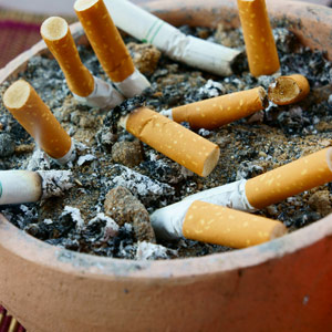 Zimbabwe's tobacco industry starts on a high note in 2013