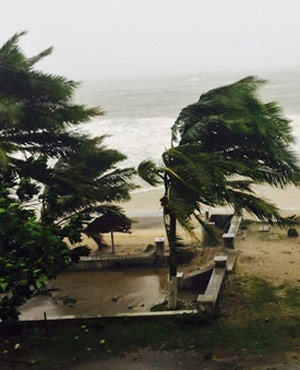 Trees are lashed by strong winds in Sambava, Madagascar, as heavy rains and strong winds from a cyclone hit northeast Madagascar, raising concerns about flooding and landslides. (AP)