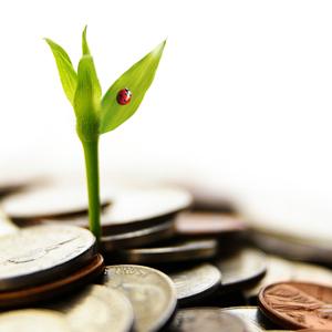 money, grow, invest