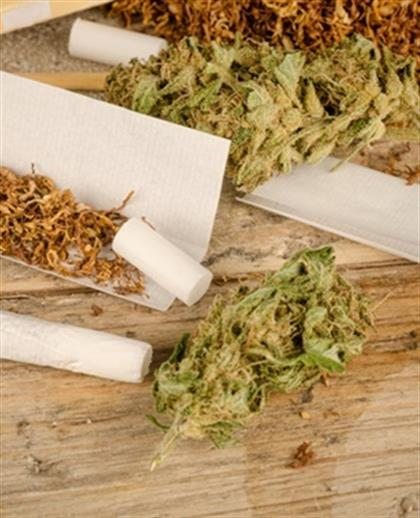 GRAPHIC: Why the sixth Parliament will have to legalise weed