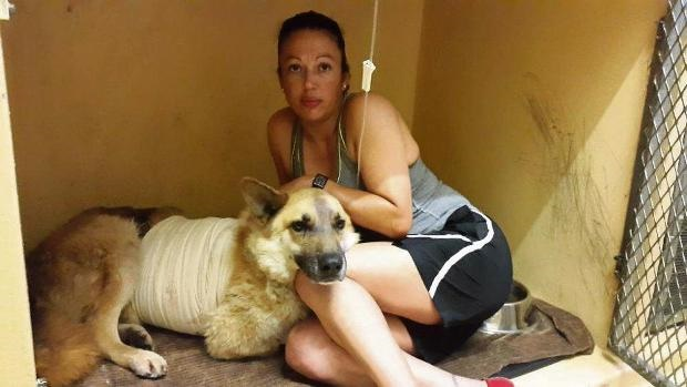 Constable Jackie Marais comforts her dog Rex at a local vet.