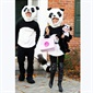 A perfect family of pandas. Bethenny Frankel and her husband, Jason Hoppy with their son, Bryn,  are excited for Halloween. They can't wait to trick-or-treat!