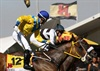 Jockey Anthony Delpech on winning horse Igugu at the 2012 J&B Met.