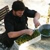 Head chef Rob Erleigh