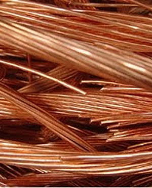 Copper (Picture: Supplied)