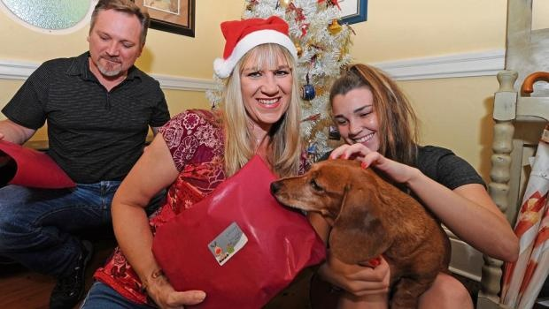 Pietermaritzburg Chamber of Business CEO Melanie Veness wraps presents supervised by her husband Mark, daughter Cloë and sausage dog Mia at their home in Clarendon.