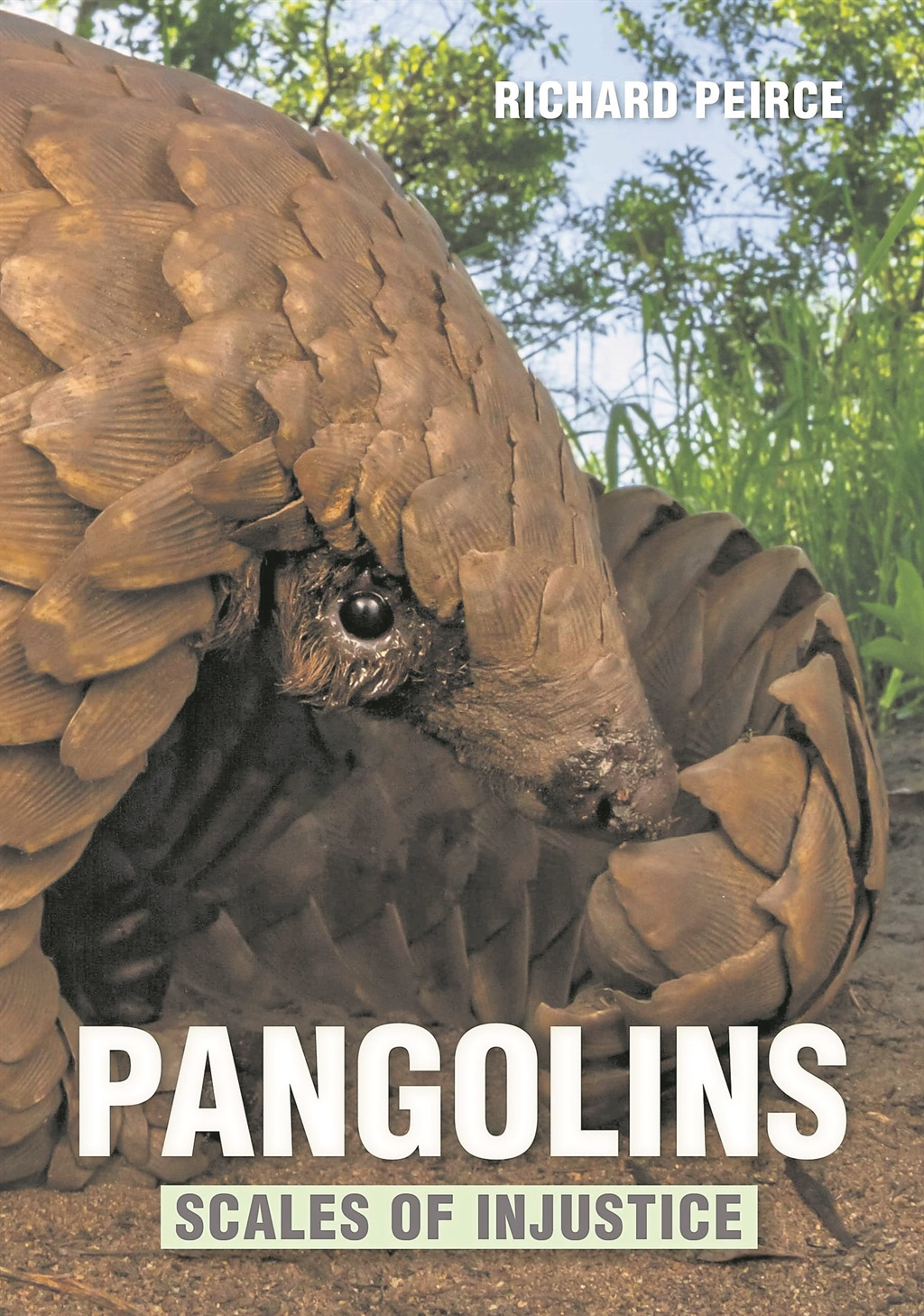 Pangolins: Scales of Injustice
