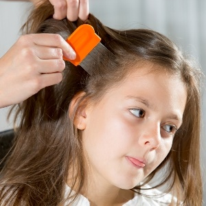 combing lice out of hair